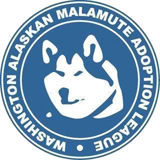 Washington Alaskan Malamute Adoption League (WAMAL)
